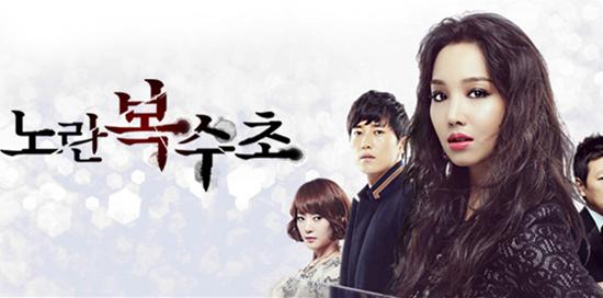 tvN 노란복수초